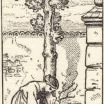 Сказки братьев Гримм. Сказка о заколдованном дереве (Сказка про можжевельник)