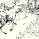 Сказки братьев Гримм. Волк и человек
