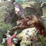 Сказки братьев Гримм. Белоснежка и Розочка (Беляночка и Розочка)