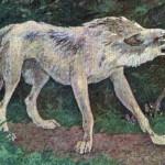 Русские народные сказки. А. Н. Афанасьев. Волк