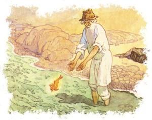 Русские народные сказки. А. Н. Афанасьев. Золотая рыбка