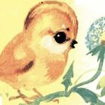 Сказки и стихи Чуковского. Цыплёнок