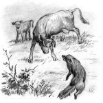 Рассказ Константина Дмитриевича Ушинского. Бодливая корова