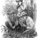 Рассказ Константина Дмитриевича Ушинского. Грядки гвоздики