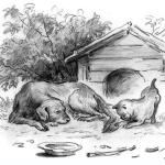 Рассказ Константина Дмитриевича Ушинского. Играющие собаки